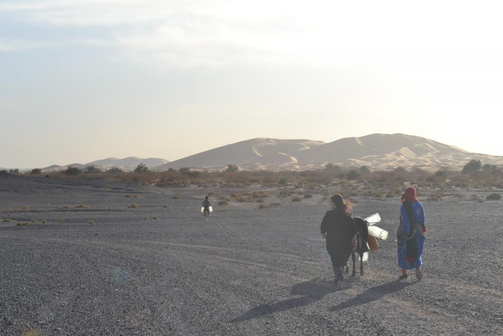 desierto erg chebbi. Nomadas