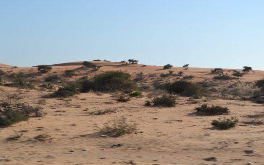 De Nouakchot a la frontera (Mauritania urbana y Mauritania rural)