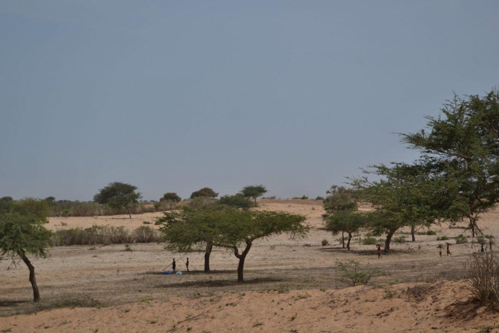 Lompoul desierto. Senegal