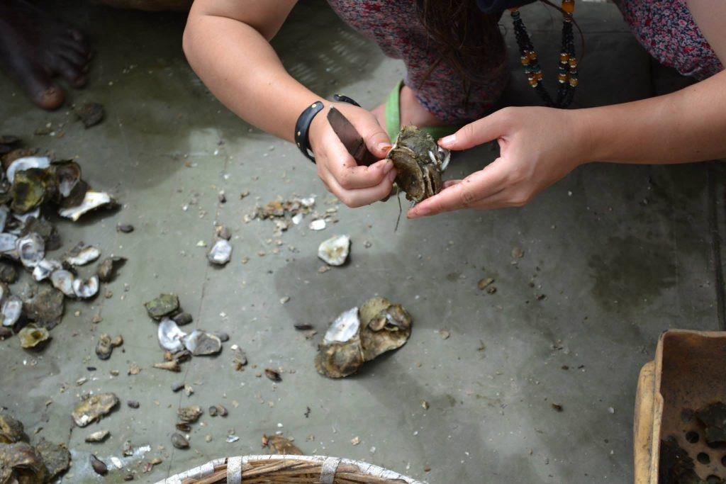 Recolectoras de ostras Gambia. Kartong