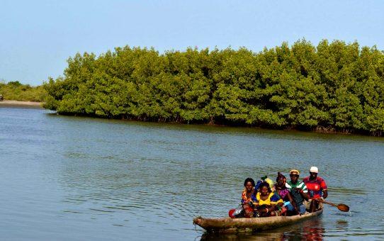 Gambia. De Barra a Banjul