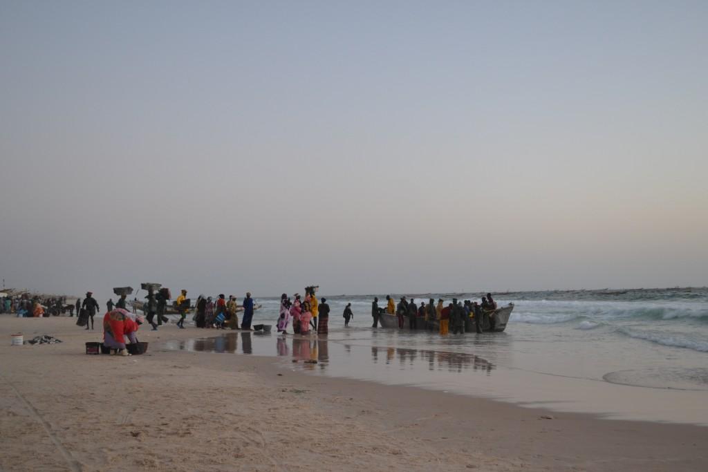 Mauritania. Viajar a Mauritania