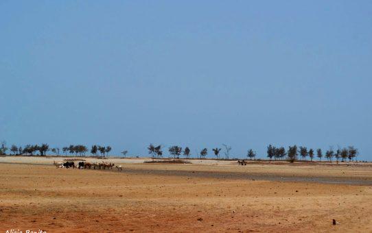 "Itinerario de viaje ""Ruta Transahariana Atlántica"": Mauritania, Senegal y Gambia"