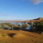 Ha llovido en el desierto  |  El agua que nos quita y nos dá